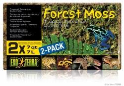 Forest Moss 2 pk 7qt