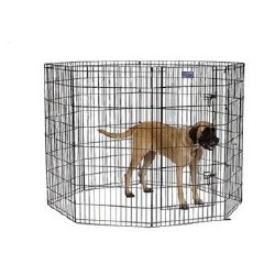MidWest Exercise Pen with Step-Thru Door Black E-Coat 48 Inch Tall