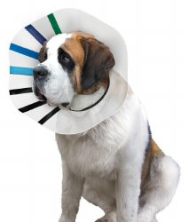 """King E-Collar Fits 21-25"""""""