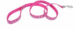 Ribbon Nylon Pink Stripe Flamingo 6 Inch x 5/8 Inch Wide Leash