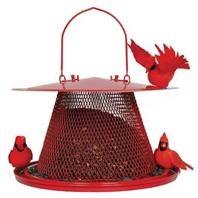 No/No Cardinal Feeder Red