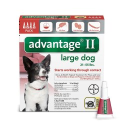 Bayer Advantage II Large Dog 21-55 lbs 4 Month Supply