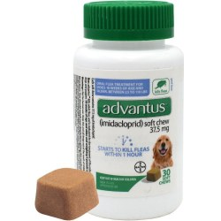 Bayer Advantus Flea And Tick Soft Chew 30 Count For Large Dogs 23-110lb