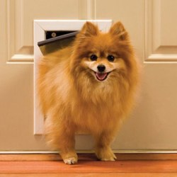 Petsafe Solid Aluminum Small Pet Door Upto 15lbs