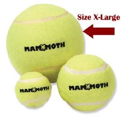 Big 6in Tennis Ball
