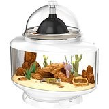 BioBubble Terrarium Reptile habitat 24x15.25x25