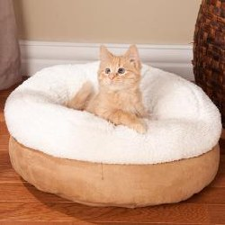 All For Paws Donut Bed Tan Cat Bed 18 Inch