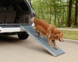 Solvit Pet Ramp