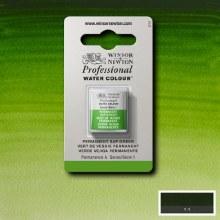 PWC HP PERMANENT SAP GREEN