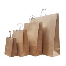 Brown Paper Carrier No.6 (100)