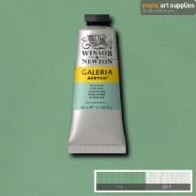 GALERIA 60ML PALE OLIVE