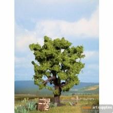 Oak Tree 15cm