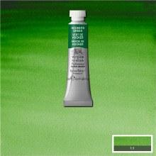 W&N Professional Watercolour 5ml Hooker's Green