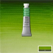 W&N Professional Watercolour 5ml Permanent Sap Green