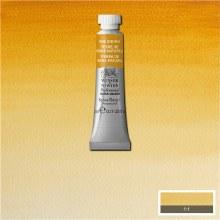 W&N Professional Watercolour 5ml Raw Sienna