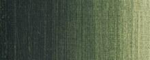 Sennelier Artists Oil Colour 40ml Greenish Umber 203
