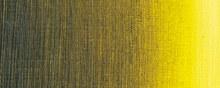 Sennelier Artists Oil Colour 40ml Golden Green 851