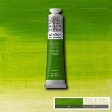 WINTON 200ML CHROME GREEN Hue 11