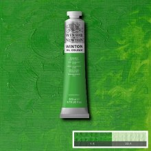 WINTON 200ML PERMANENT GREEN LIGHT 48