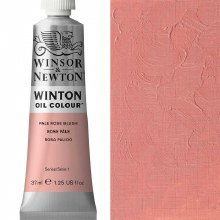 WINTON 37ML FLESH TINT 20