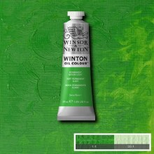 WINTON 37ML PERMANENT GREEN LIGHT 48