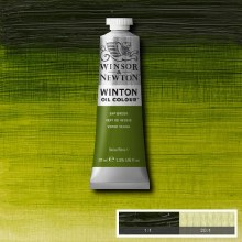 WINTON 37ML SAP GREEN 37