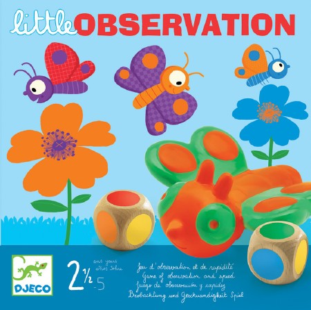 Toddler Game - Little Observe