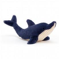 Dana Dolphin