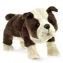 Puppet English Bulldog Puppy