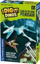 GID Pterosaur Excavation Kit