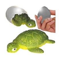Hatchin' Grow Turtle Boxed