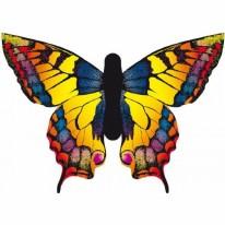 Kite Butterfly Swallowtail  L