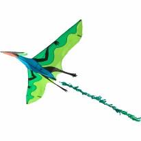 Kite Flying Dinosaur 3D