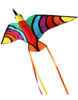 Kite Tropical Bird