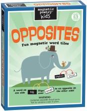 Opposites Magnetic Kit NS
