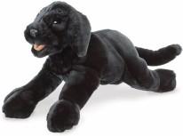 Black Labrador Puppy Puppet
