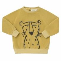 Sweatshirt Leo 3-6m