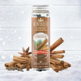 Cinnamon 6pc Scentsicles