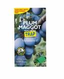 Plum Maggot Control
