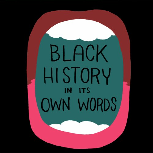 Black History In Its Own Words HC