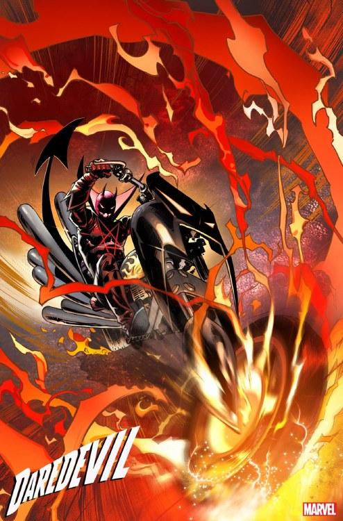 Daredevil #16 Benjamin Marvels X Var