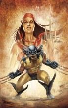 Indestructible Hulk #9 Wolverine Costume Variant