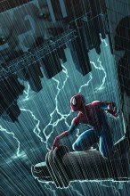 Amazing Spider-Man #700.5