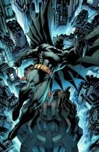 Absolute Batman & Robin the Bo