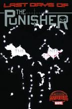 Punisher #20