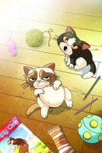 Grumpy Cat #3 (of 3) Rare Uy V
