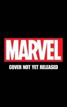 Punisher #6 Cosplay Variant