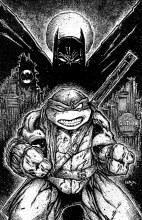 Batman Teenage Mutant Ninja Turtles Ii #2 (of 6) Var Ed *Not Final Cover*