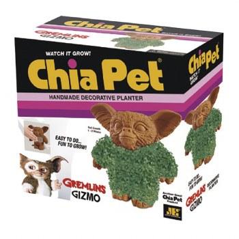 Chia Pet Gizmo (C: 1-1-2)