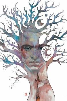 Neil Gaiman American Gods Moment of Storm #1 Cvr B Mack